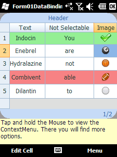 DataGrid screen