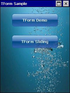 TForm screen
