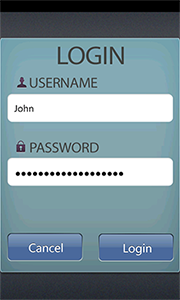 VistaButton on a Login Form