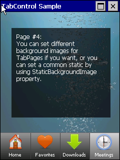 TabControl screen