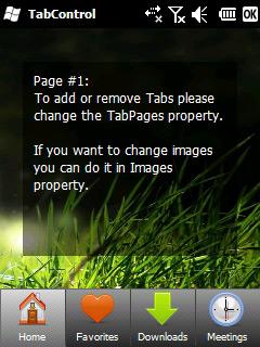 TabControl screen